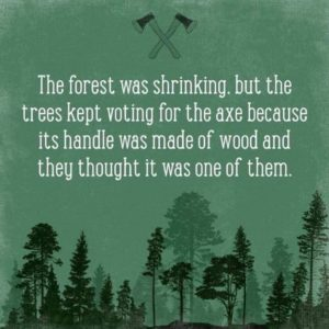 the forest was shrinking, but the trees kept voting for the axe because its handle was made of wood and they thought it was one of them
