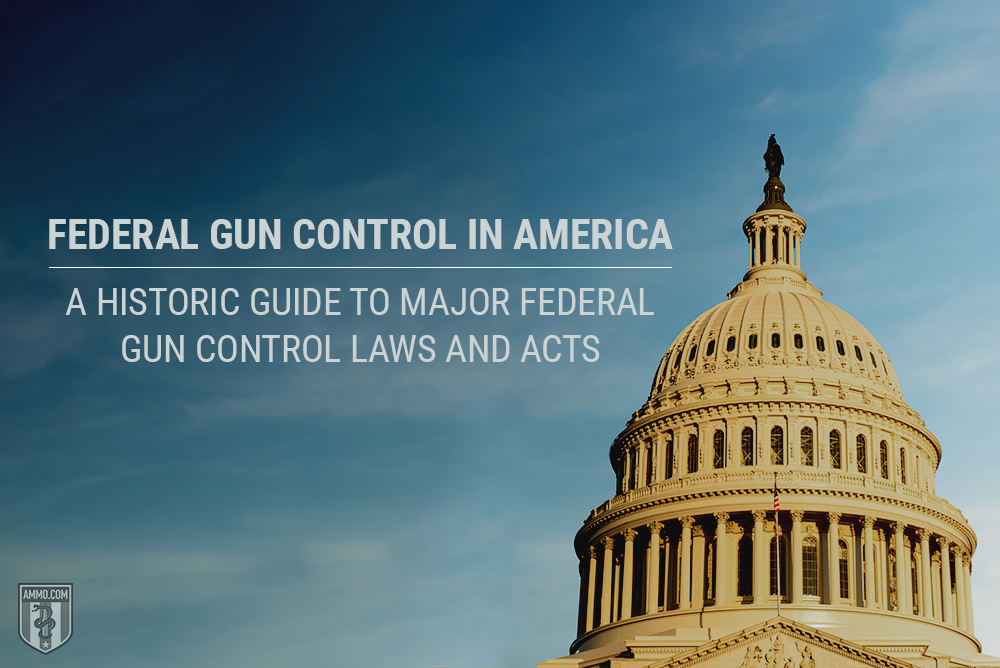 Federal Gun Control