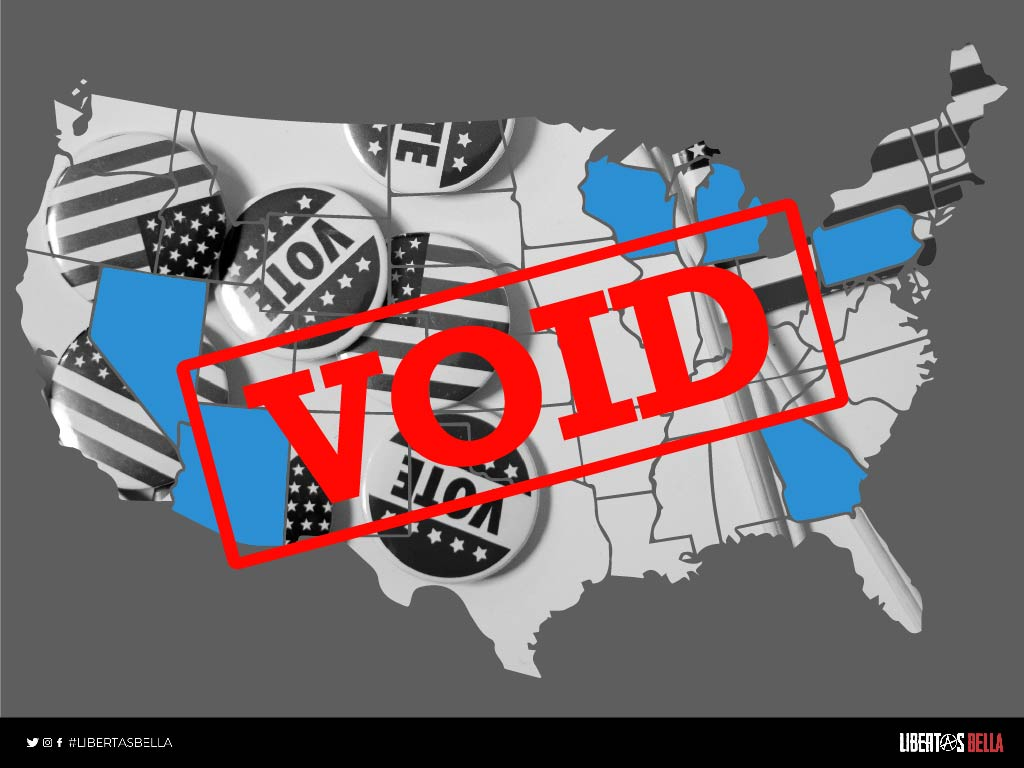 united states national election fraud