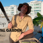 Touring My Roof Top Survival Garden in Puerto Rico